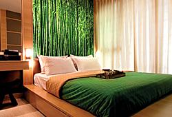Бамбуковый лес - фотообои в восточном стиле